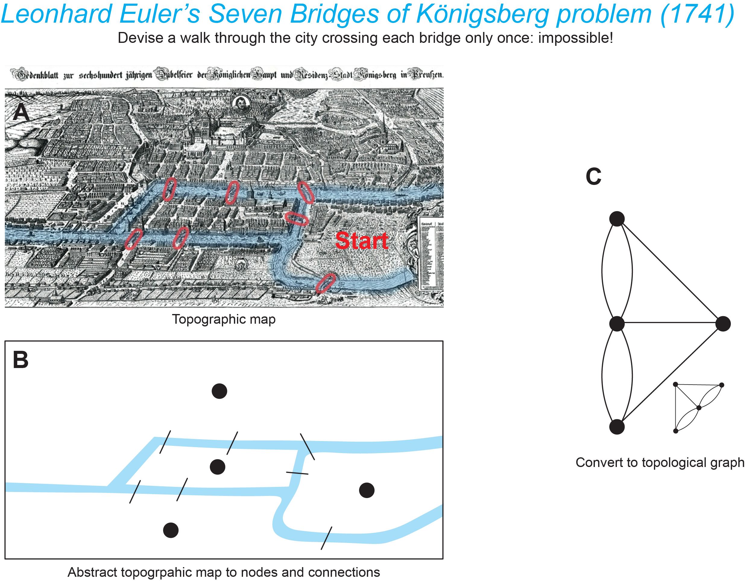 Euler's bridges