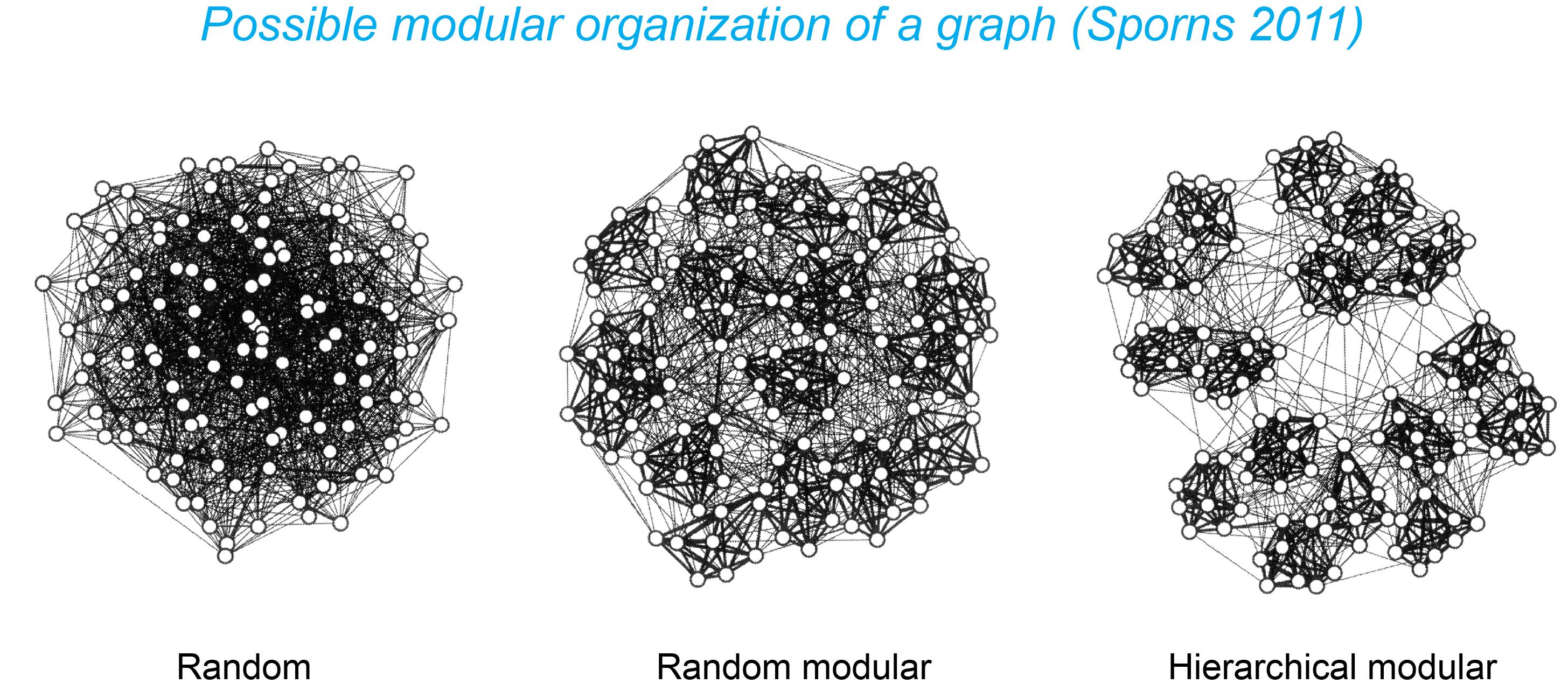 Graph modules