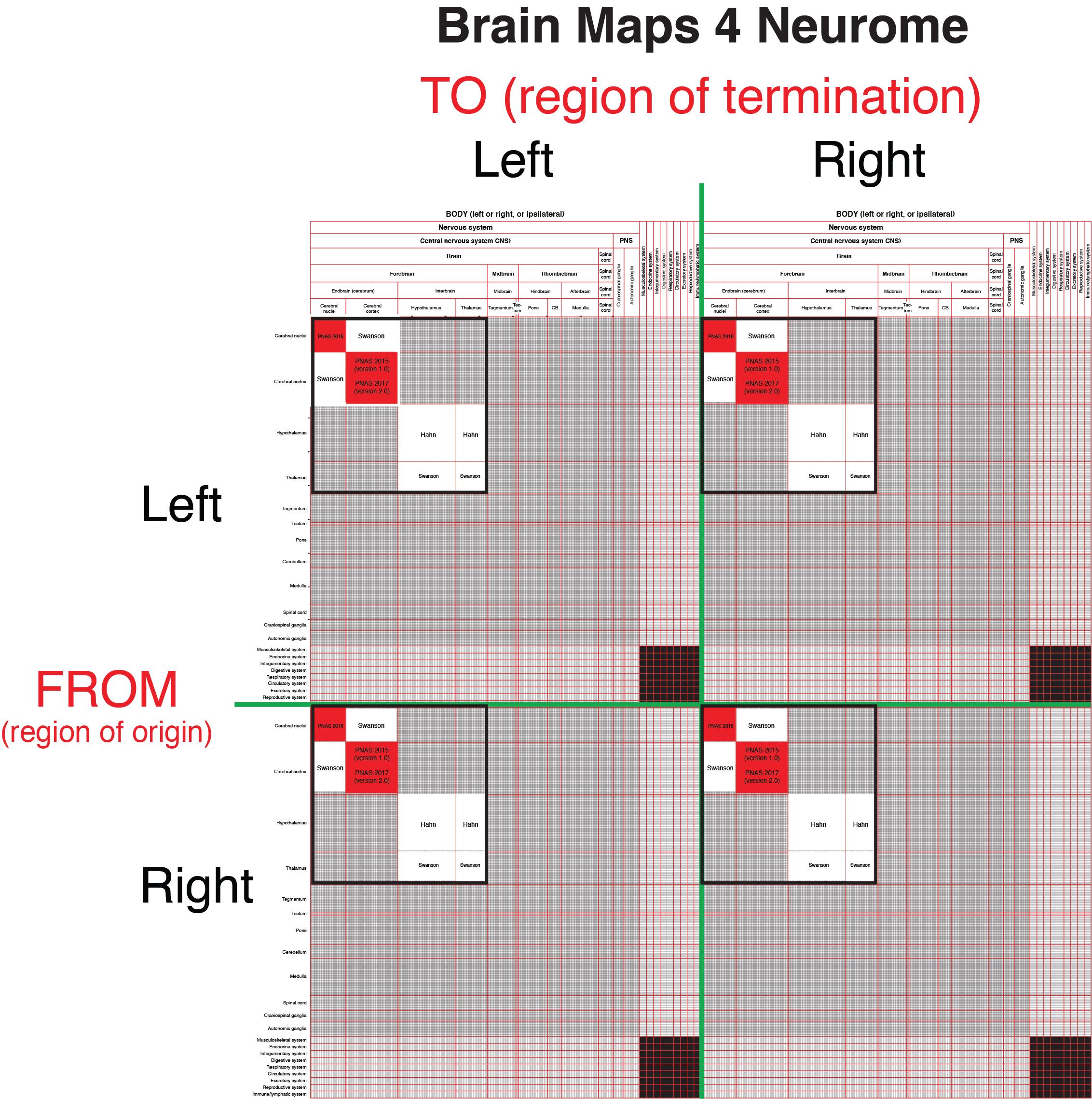 Rat Neurome Project | Larry Swanson